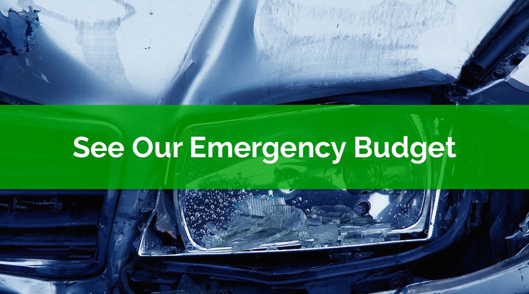 Calling All Financial Voyeurs! See Our Emergency Budget