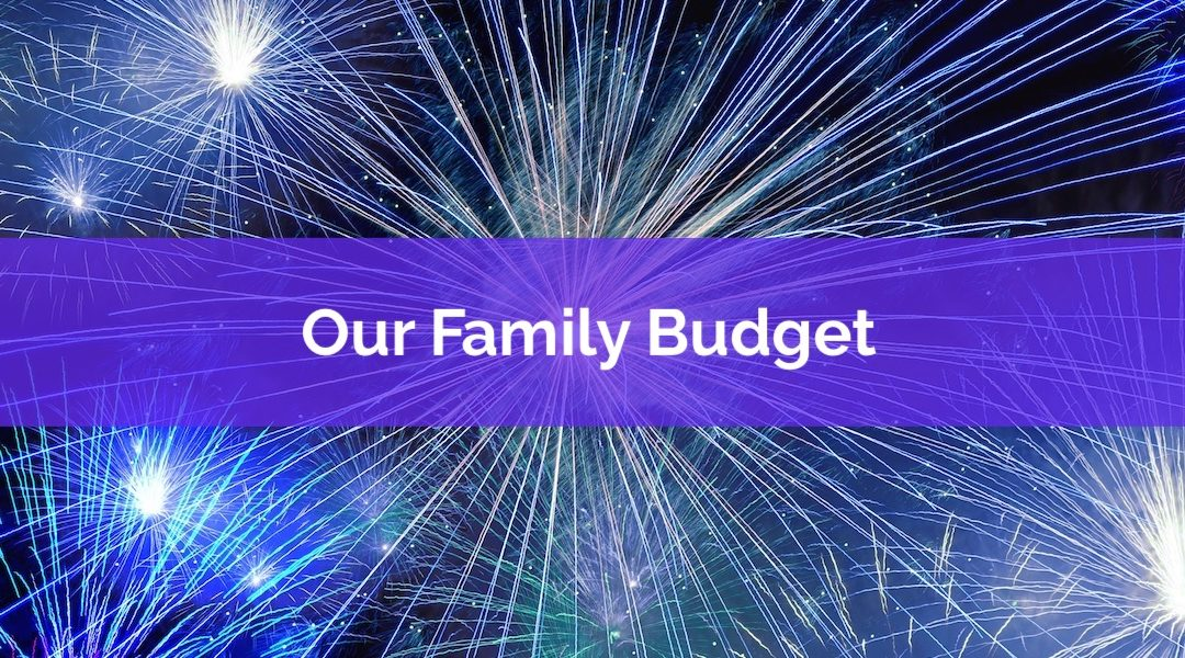 Attention Financial Voyeurs! See Our 2018 Family Budget